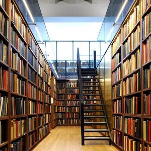Библиотеки Владимира