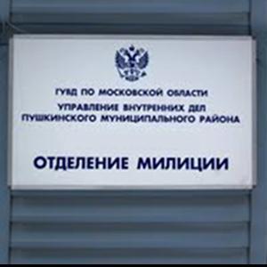 Отделения полиции Владимира