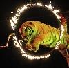 Цирки в Владимире
