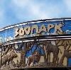 Зоопарки в Владимире