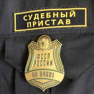 Судебные приставы Владимира