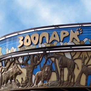 Зоопарки Владимира